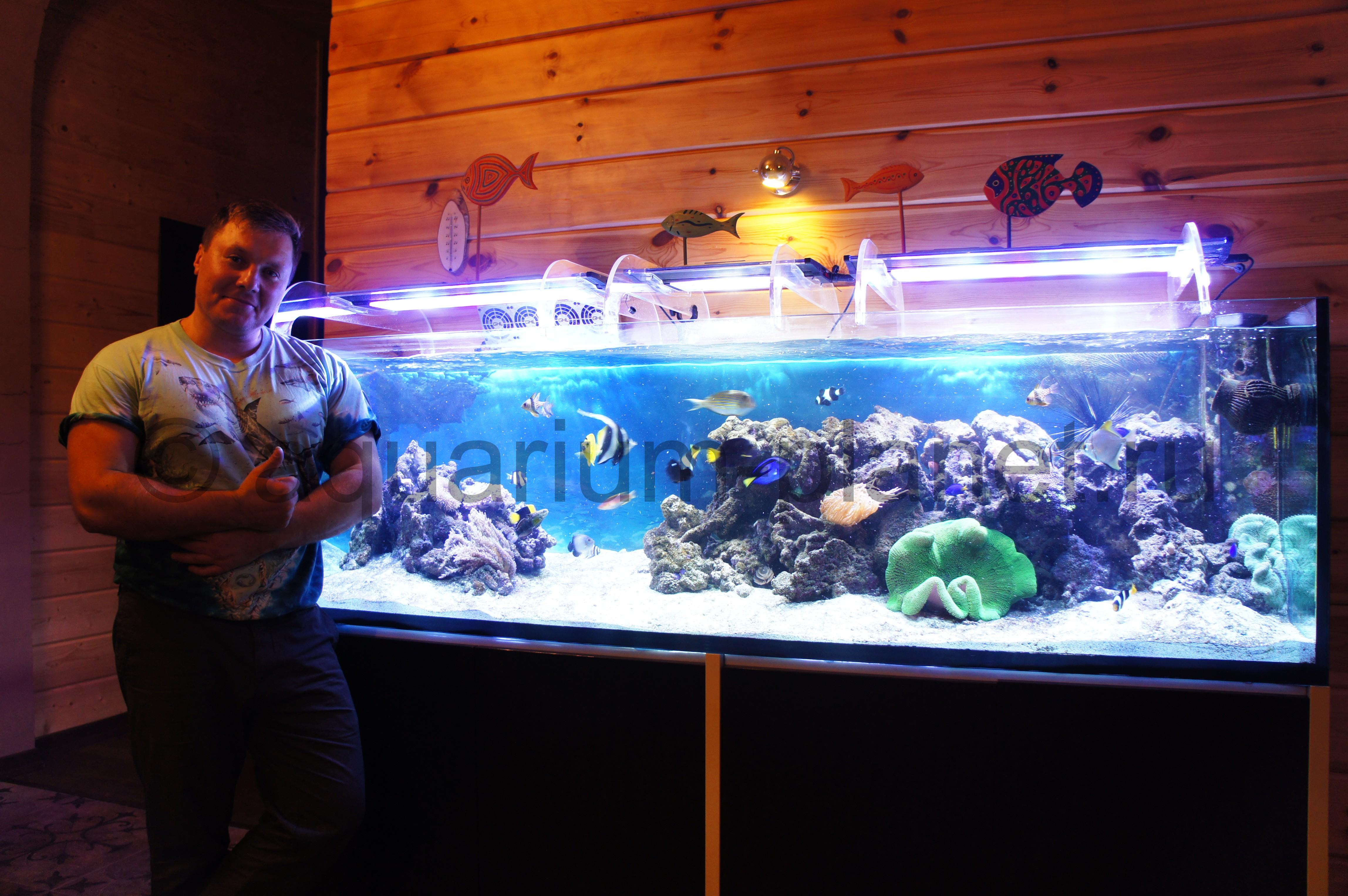 Акция на аквариум
