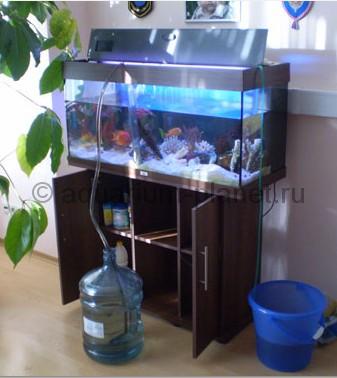 Aquarium planet for Aquarium reinigen